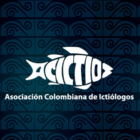 Congreso Acictios 2019