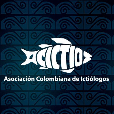 Congreso Acictios 2019