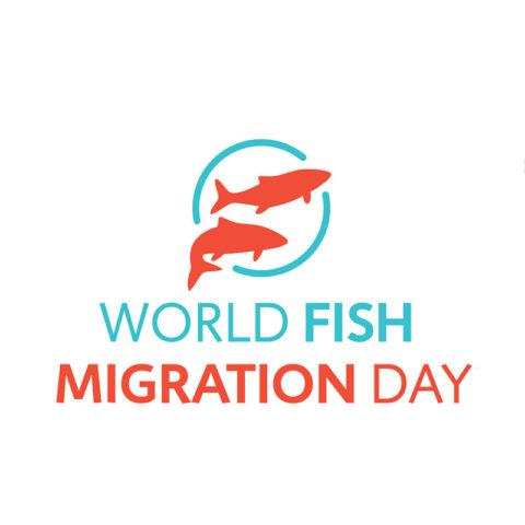 World Fish Migration Day – Encuentro de saberes para la defensa de nuestros ríos y sus peces migratorios