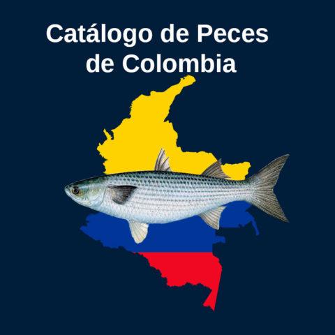 Catálogo de Peces de Colombia