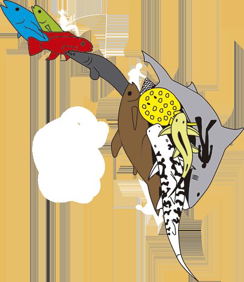 Acictios Logo XV Congreso Colombiano de Ictiologia - VI Encuentro de Ictiólogos Suramericanos